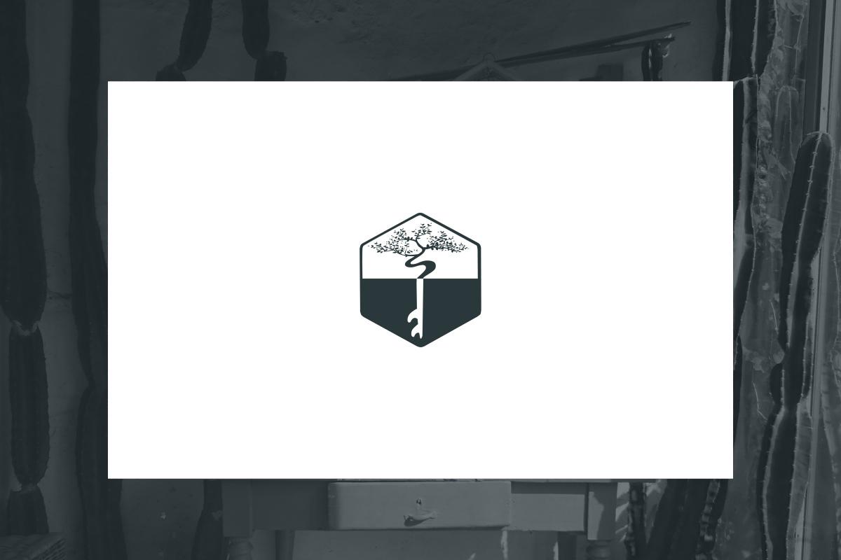 Logo Ahimsa 01